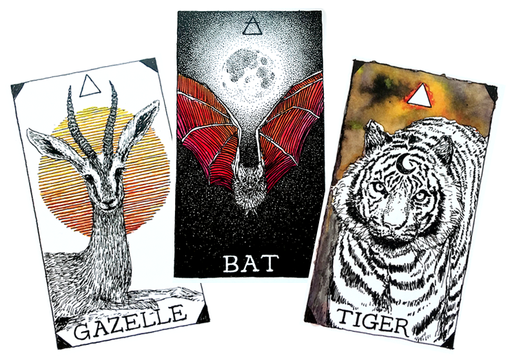 3 Card Tarot Spreads with The Wild Unknown Animal Spirit